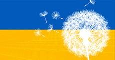 Kinoplan-dlya-Ukrainy1