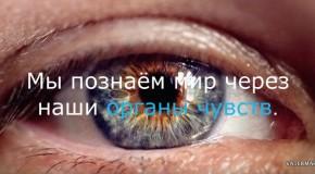КИНО ЭКСПО 2017: ИННОВАЦИИ МЕНЯЮТ БИЗНЕС КИНОТЕАТРОВ. ЧАСТЬ 2
